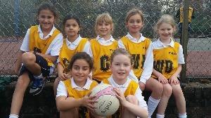 girls_netball_win_Nov_2015